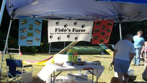 Fidos Farm Agility Training